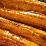 うなぎの蒲焼き消費は2017年も浜松が首位 10年連続1位