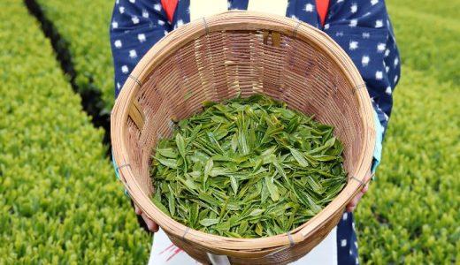 お茶の生産量(茶生葉収穫量)都道府県別ランキング
