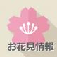 浜松・遠州お花見スポット 2018